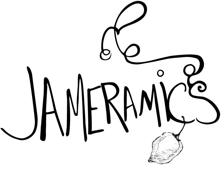 Jameramics custom logo design