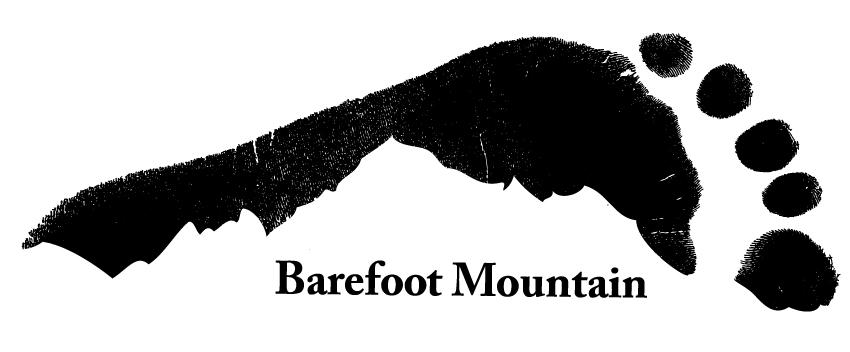 Barefoot Mountain logo design by 602 Creative